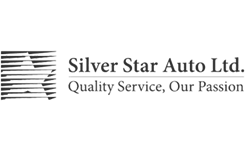 Silver Star Auto Limited logo
